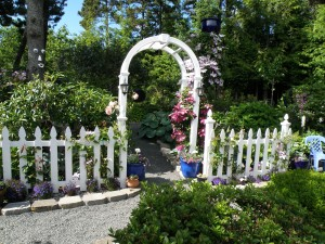 This cottage garden bursts with color.  You will enter through and arbor and follow paths that take you to a lily area, an oriental area and more.  You will see many varieties of clematis and David Austin roses both climbers and bush roses.  She features blue glass art throughout.