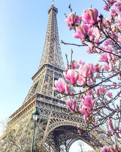 lush-fab-glam.com-spring-in-paris-travel-photos-4
